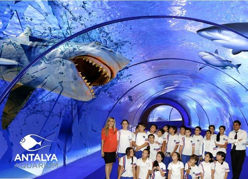 Antalya Aquarium Tour Program